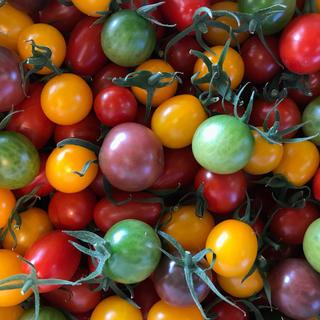 〈関東限定〉トマトの宝石箱1.8kg(野菜)