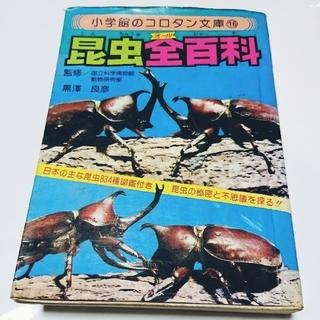 ショウガクカン(小学館)の🐜昆虫全百科🐝    夏(絵本/児童書)