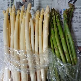 佐賀県産ホワイト&グリーンアスパラ1キロ(訳あり)(野菜)