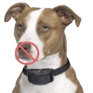 効果抜群♫犬無駄吠え防止首輪 犬の訓練 しつけ用首輪(リード/首輪)
