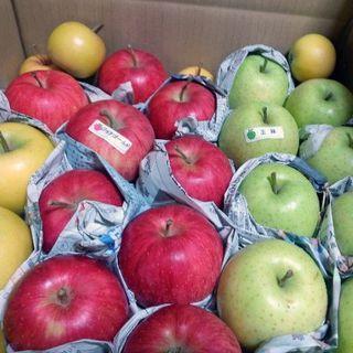 まゆゆん様専用ページ食べ比べ 品種いろいろ!10キロ⭐青森りんご 送料込み(フルーツ)