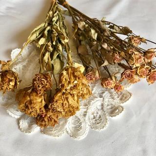 ドライフラワー、花材、トルコキキョウ、ミニバラ(ドライフラワー)