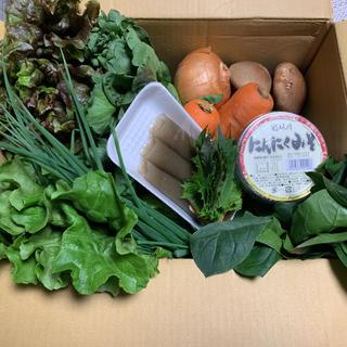 新鮮野菜!80size!内容、size変更可能!パンパンで発送します!(野菜)