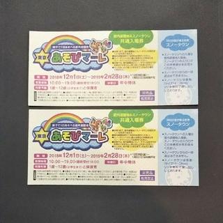 東京あそびマーレ 2枚セット(遊園地/テーマパーク)