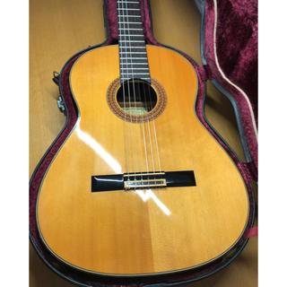 黒澤澄雄 SP(クラシックギター)