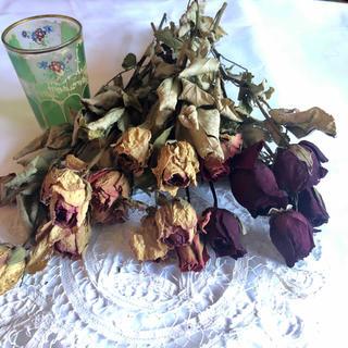 ドライフラワー 3色のバラ 20本!(ドライフラワー)