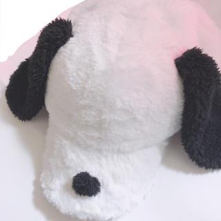 ユニバーサルスタジオジャパン(USJ)のスヌーピー  帽子 USJ(キャップ)