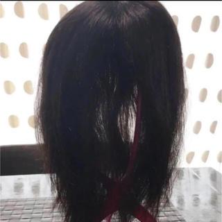 アートネイチャー(アートネイチャー)の人毛100%トップヘアピース、医療部分ウィッグカツラ検)アクアドール、アデランス(ロングストレート)