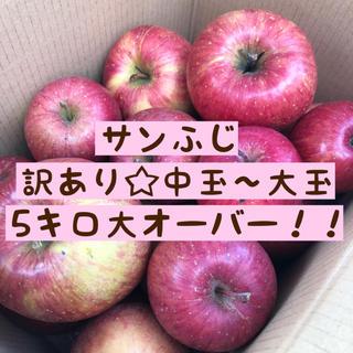 訳あり*サンふじりんご中〜大玉 5キロ大オーバー!!(フルーツ)