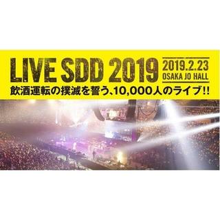 2/23 LIVE SDD 2019 スタンド 1枚 (音楽フェス)