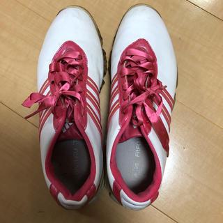 アディダス(adidas)のアディダス リボン ゴルフシューズ 25cm(シューズ)