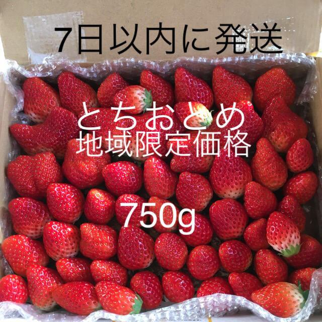 とちおとめ 750g 食品/飲料/酒の食品(フルーツ)の商品写真