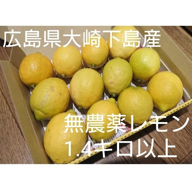 広島県大崎下島産 無農薬レモン 1.4キロ以上 食品/飲料/酒の食品(フルーツ)の商品写真