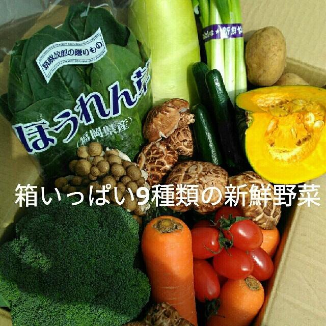 美味しい九州産✨新鮮野菜9種類を箱いっぱい詰め合わせセット✨ 食品/飲料/酒の食品(野菜)の商品写真
