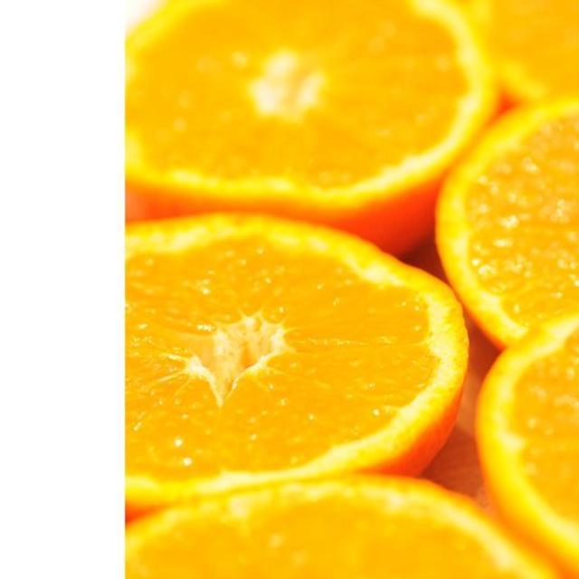 蔵出しみかん10kg(家庭用)和歌山県下津町から農園直送、翌日発送可能その3 食品/飲料/酒の食品(フルーツ)の商品写真