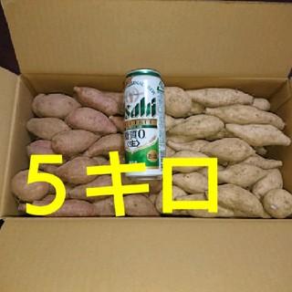 安納芋&種子島ゴールド 詰め合わせ SSサイズ 5キロ(野菜)