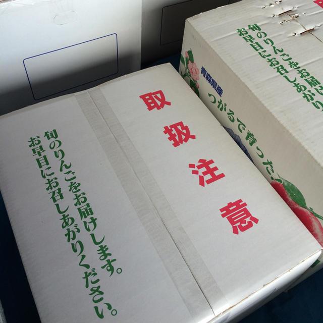 ★青森弘前農家直送★人気★特別栽培★デザートに 食品/飲料/酒の食品(フルーツ)の商品写真