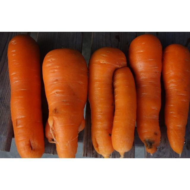 農家直送の訳あり人参5kg 食品/飲料/酒の食品(野菜)の商品写真