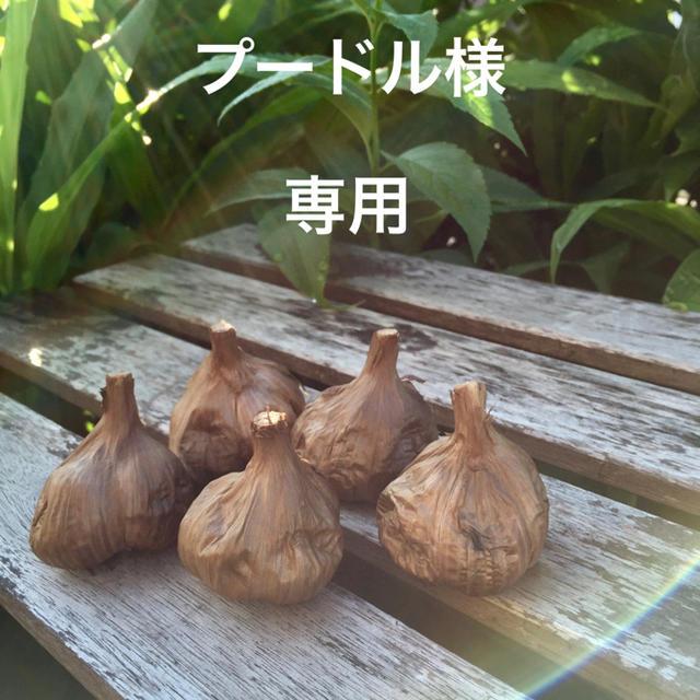 青森県産黒にんにく 食品/飲料/酒の食品(野菜)の商品写真