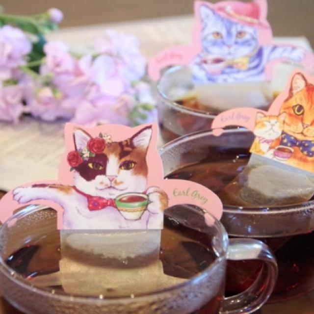 紅茶 キャットカフェ アールグレイ 食品/飲料/酒の飲料(茶)の商品写真
