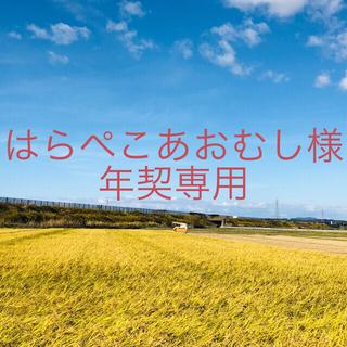 【はらぺこあおむし様 年契専用】令和2年度 こまち中25kg①ひとめ25kg⑥(米/穀物)