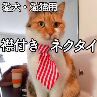 【新品】猫 犬 ネクタイ コスプレ 首輪 シャツ 服 ストライプ ねこ