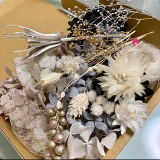 ドライフラワー 花材 モノトーン(ドライフラワー)