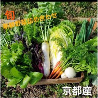 新鮮野菜詰め合わせ!無農薬 減農薬野菜 京都よりお届け(野菜)