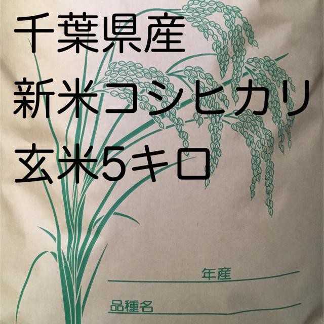 即購入おk様専用コシヒカリ玄米5キロ 食品/飲料/酒の食品(米/穀物)の商品写真