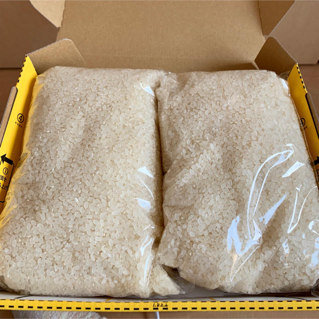 ラスト1つ  ゆめつくし  福岡産 お米  2kg    食品/飲料/酒の食品(米/穀物)の商品写真