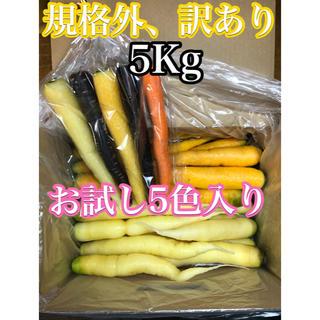 彩りフルーツにんじん。規格外、訳あり5kg。無農薬野菜。お試し5色付き(野菜)