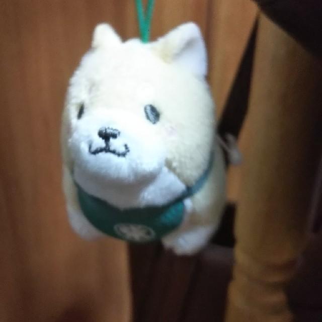 もち柴犬 キーホルダー エンタメ/ホビーのおもちゃ/ぬいぐるみ(キャラクターグッズ)の商品写真