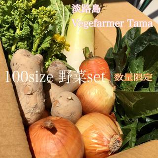 ☆ 淡路島【 きまぐれ 】100 野菜set(野菜)