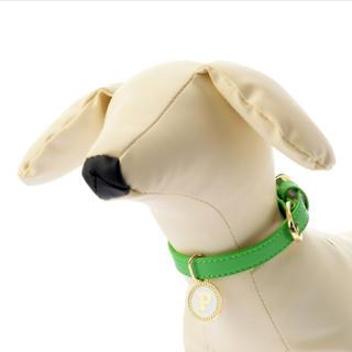 ディズニー(Disney)のディズニー プルート 犬用首輪(犬)