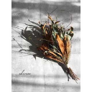 凛とした空気を纏う グレビレアと枝物のシンプルなスワッグ ドライフラワー(ドライフラワー)