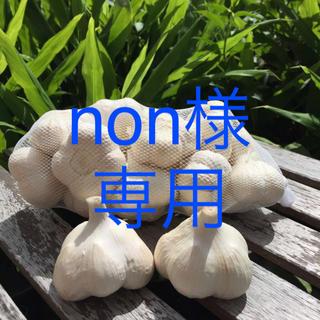 青森県産にんにくL5キロ&バラ5キロ(野菜)