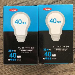 東洋ライテック 白熱電球 40W型 36W 口金E26 二個セット(蛍光灯/電球)