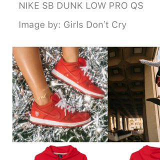 Girls Don't Cry × NIKE SB ダンク 27.5cm(スニーカー)