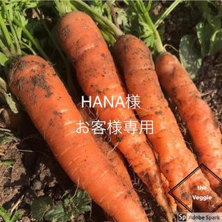 HANA様専用。(野菜)