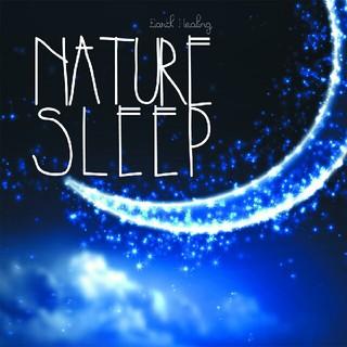 〈新品、未開封品〉眠れるヒーリングCD『 Nature Sleep』(ヒーリング/ニューエイジ)