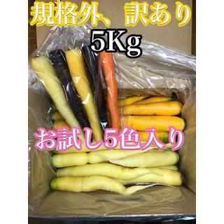 彩りフルーツにんじん。規格外訳あり2色、5kg。無農薬野菜。お試し5色付き(野菜)
