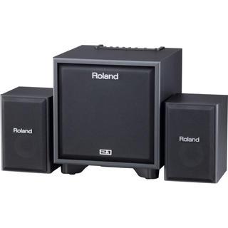 ローランド(Roland)のRoland モニタースピーカー ウーファー cm110(スピーカー)