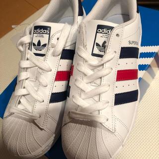 アディダス(adidas)のアディダス  スーパースター24.5(その他)