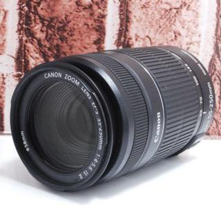 Canon - ★超美品★ Canon EF-S 55-250mm F4-5.6 IS 2型