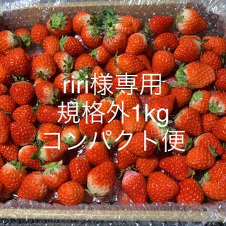 16(土)発送riri様専用●コンパクト便●規格外1kg(フルーツ)