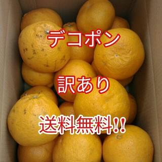 [訳あり] 不知火(しらぬい)✨甘くて美味しい✨デコポンをお届けします!