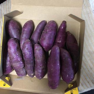 紫サツマイモーパープルスイートロト(野菜)