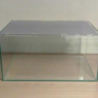 ハムスター ガラス水槽ケージ 45cm