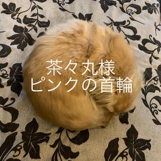 茶々丸様  ご専用(リード/首輪)