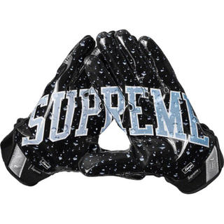 シュプリーム(Supreme)の18aw Supreme / Nike Gloves (手袋)